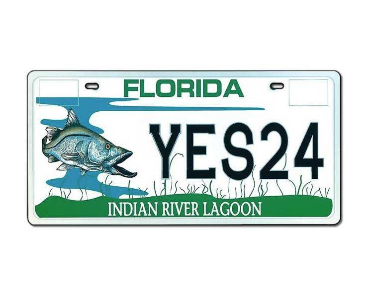 Irl license plate indian river lagoon for Department of highway safety and motor vehicles gorenew